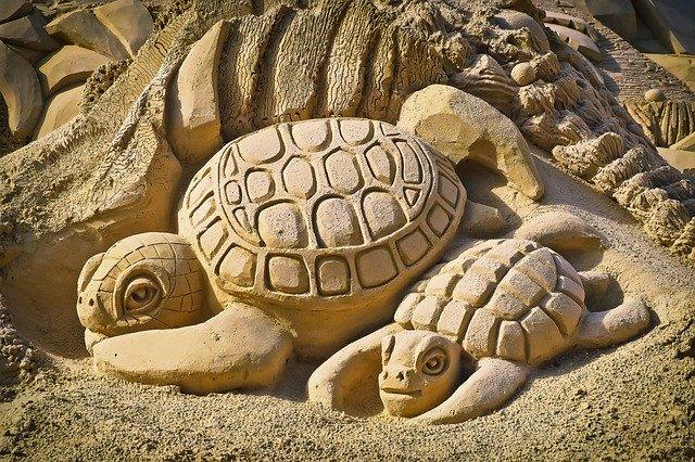 Dve korytnačky postavené z piesku.jpg